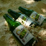 Tusker in Sand